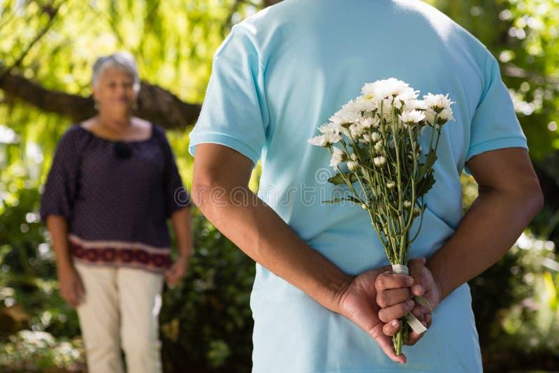 Seção mestra de flores escondendo do homem superior atrás para trás imagem de stock