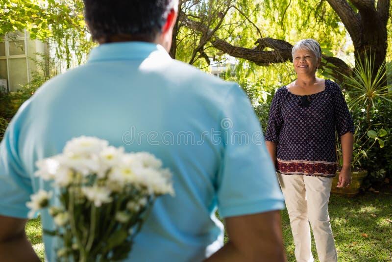 Seção mestra de flores escondendo do homem superior atrás para trás foto de stock