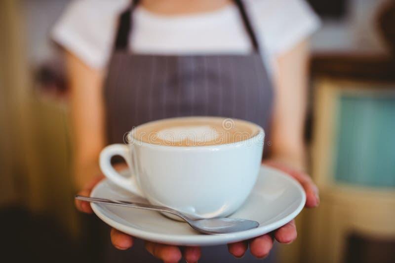 Seção mestra do café do serviço do barista no bar imagens de stock royalty free