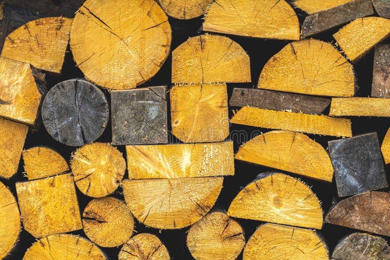 Seção transversal abstrata de pinheiros cortados foto de stock