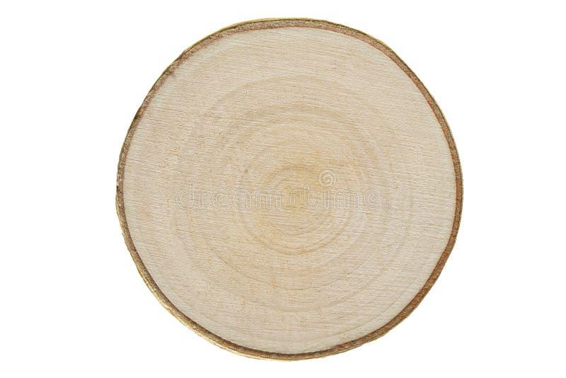Seção transversal de um trunck da madeira de vidoeiro fotos de stock royalty free
