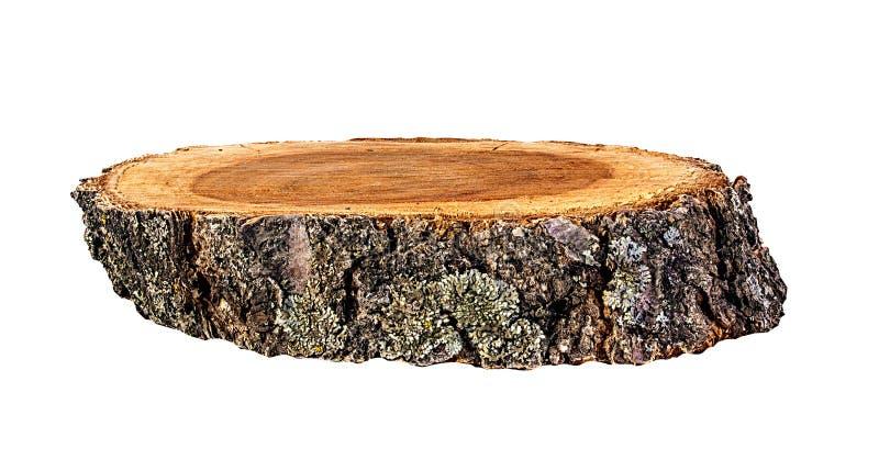 Seção transversal do tronco de árvore isolado no branco imagens de stock
