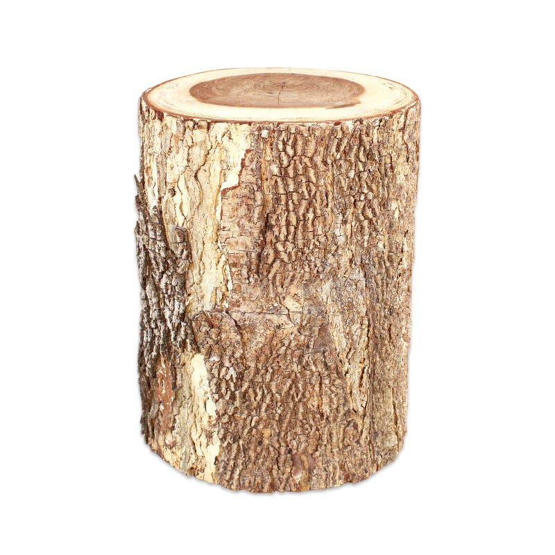 Seção transversal do tronco de árvore isolado no fundo branco imagens de stock
