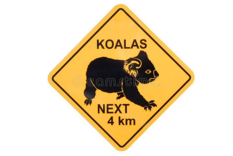 Señal de peligro de la koala foto de archivo libre de regalías