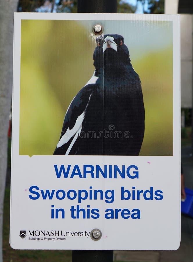 Señal de peligro Swooping de los pájaros imagen de archivo