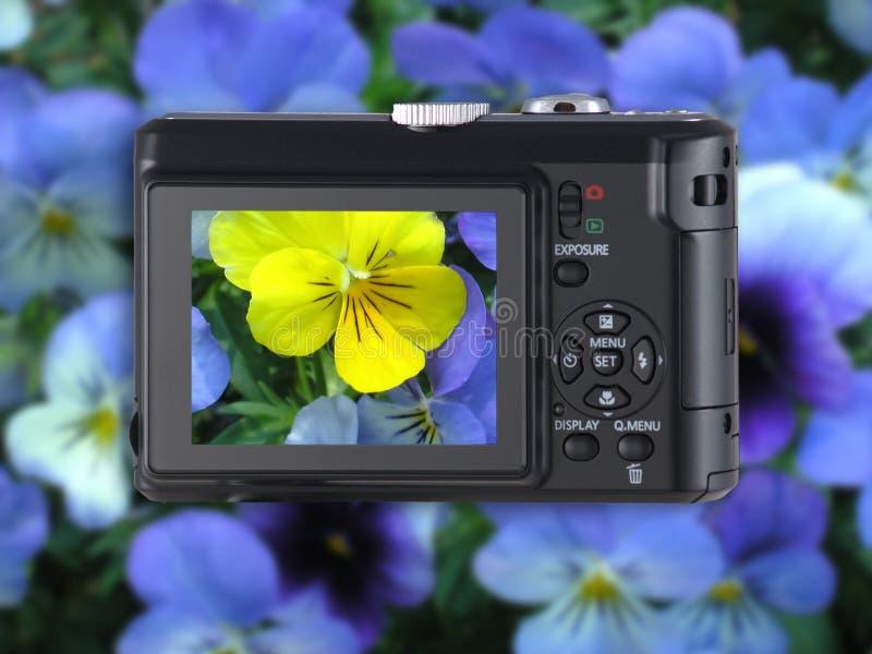 Señale y tire la cámara con las flores fotografía de archivo