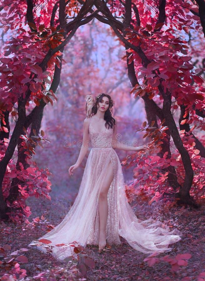Señora atractiva misteriosa en un vestido de lujo ligero largo en un bosque rosado mágico, puerta al mundo del hada-cuento, lindo fotos de archivo libres de regalías