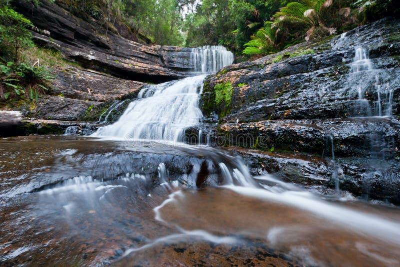 Señora Barron Falls, parque nacional del campo del Mt fotografía de archivo