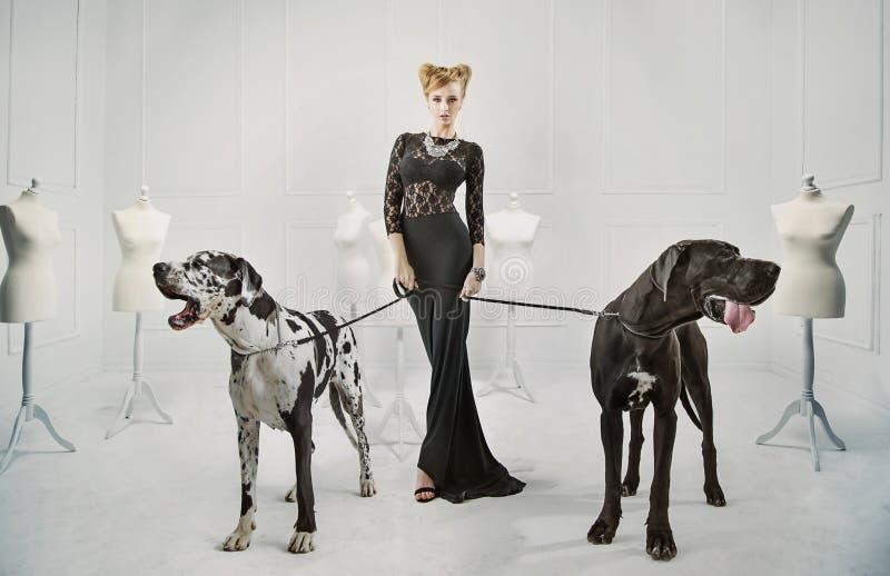 Señora elegante, seria con dos perros gigantes foto de archivo