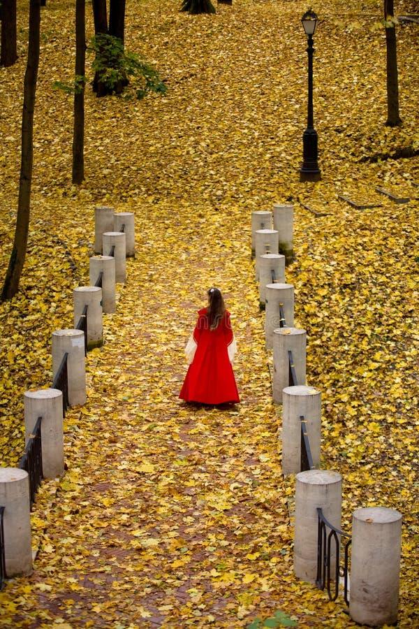 Señora en bosque del otoño imagen de archivo