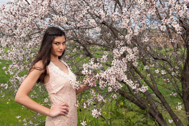 Señora hermosa joven atractiva, gozando de las flores del flor del ciruelo de la primavera foto de archivo libre de regalías
