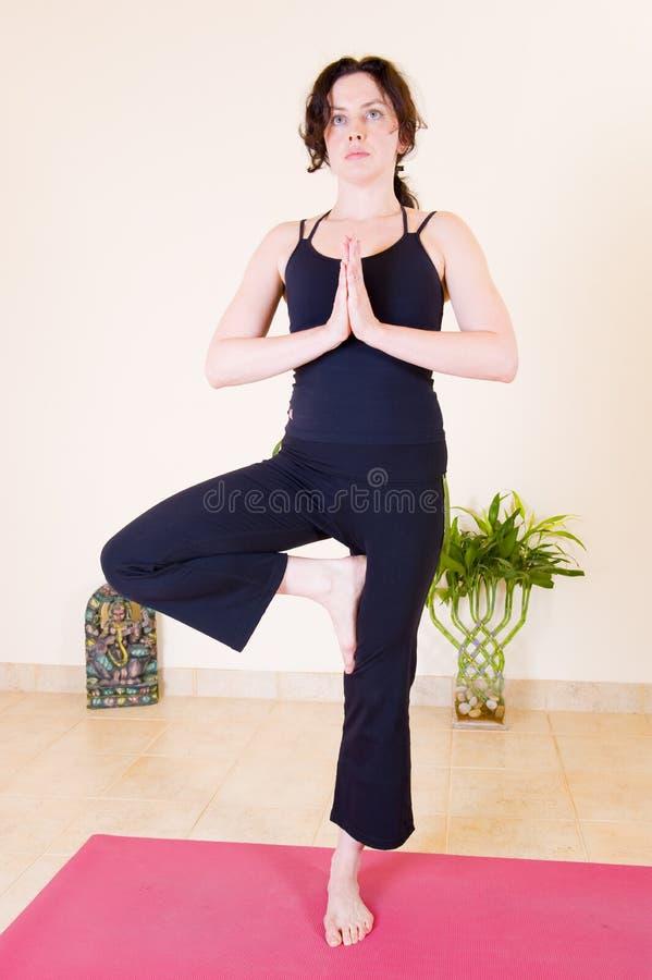 Señora joven hermosa que hace yoga foto de archivo libre de regalías