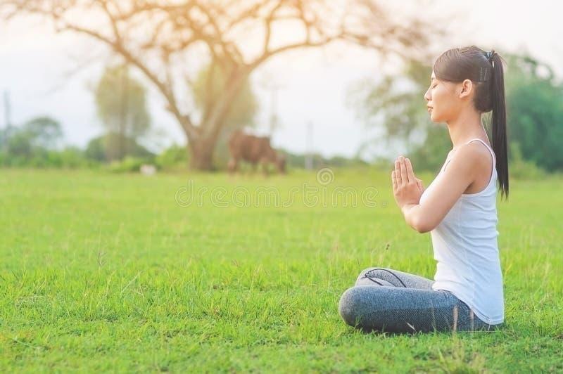 Señora joven que hace ejercicio de la yoga en el área al aire libre del campo verde que muestra la calma pacífica en mente de la  imágenes de archivo libres de regalías