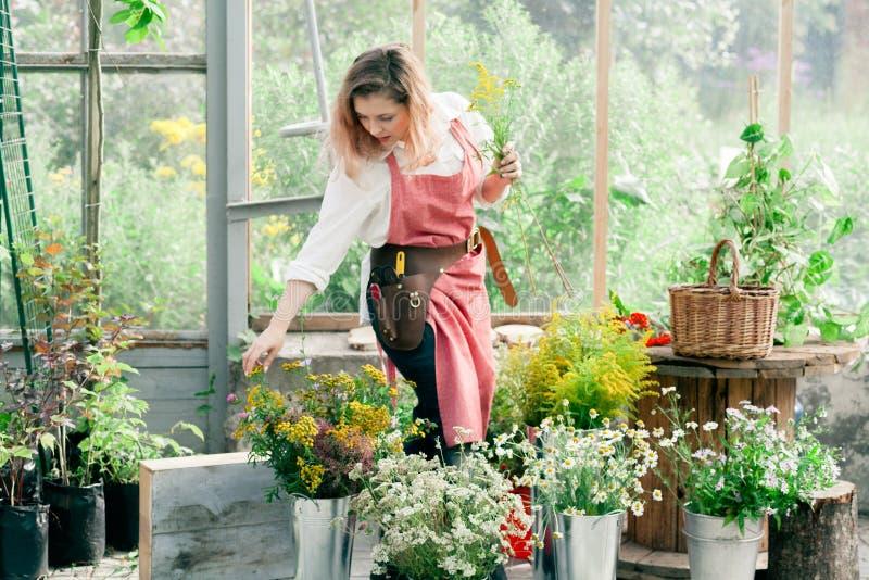 Señora linda joven que trabaja en el invernadero fotografía de archivo libre de regalías