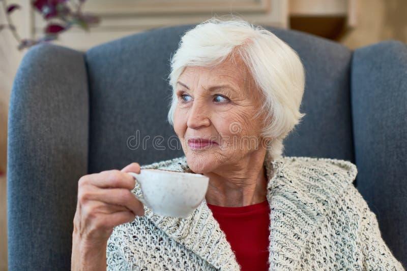 Señora mayor Enjoying Tea fotos de archivo
