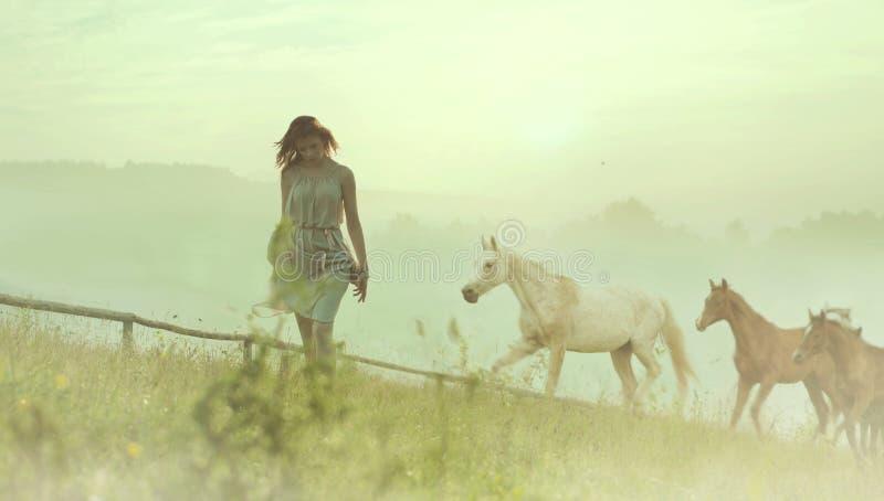 Señora morena bonita que descansa entre caballos fotos de archivo