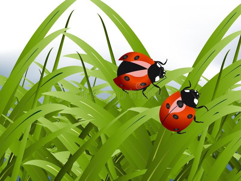 Señora roja brillante Bug ilustración del vector