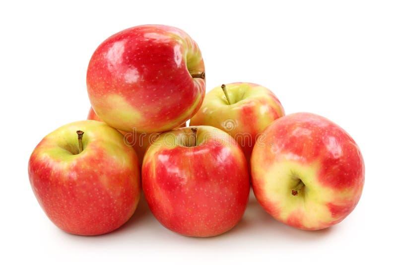 Señora rosada de Apple imagen de archivo libre de regalías