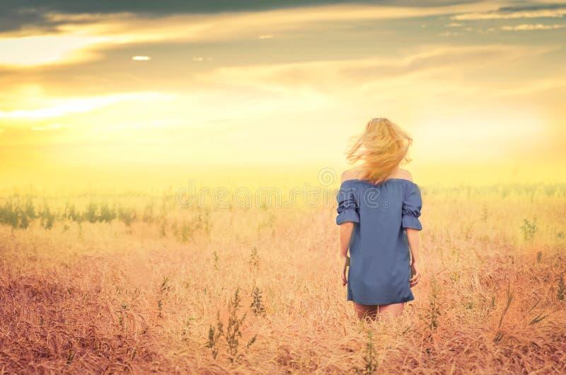 Señora rubia romántica en campo de trigo en la puesta del sol fotografía de archivo