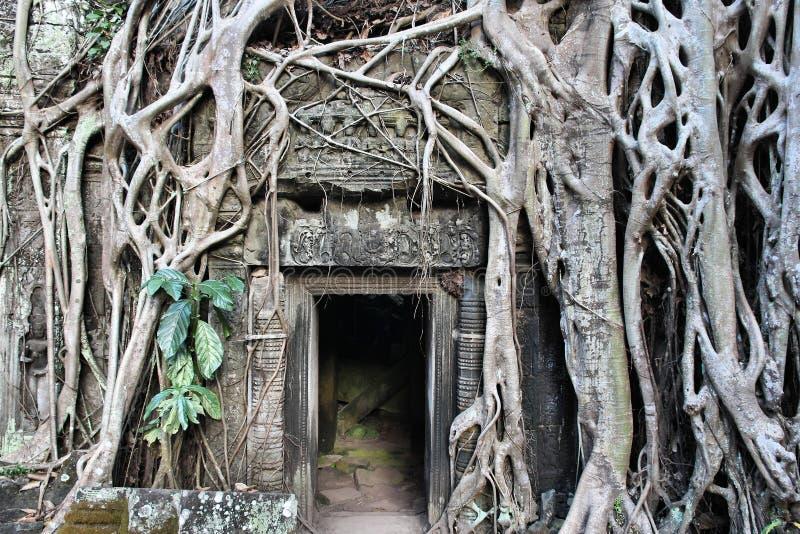 Se?al de Camboya imagen de archivo libre de regalías