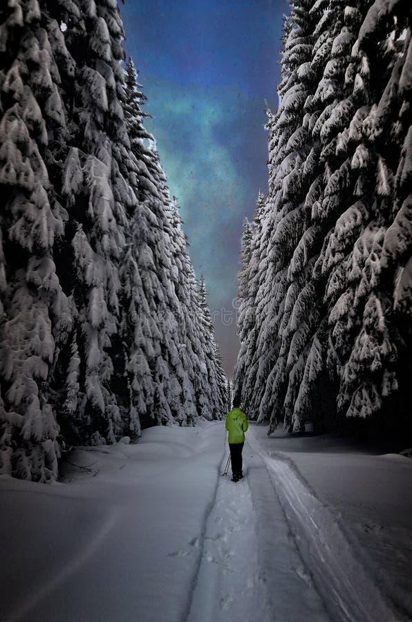 Se demander dans une neige image stock