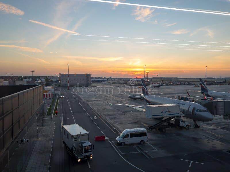 Se está manteniendo el avión y el equipaje se está cargando en el avión de Aeroflot en la madrugada imágenes de archivo libres de regalías