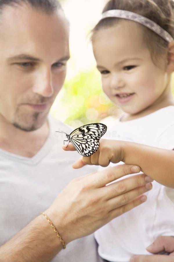 se för fjärilsfamilj arkivfoton