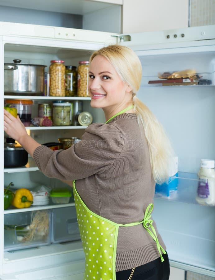 se kylskåpkvinnan arkivbilder