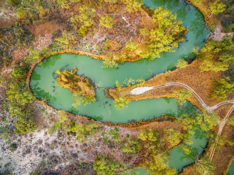Se ner på att slingra Murray River royaltyfria foton