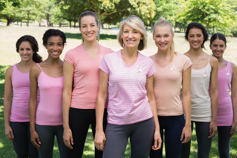 Se ofrece voluntariamente conciencia favorable del cáncer de pecho en parque imagen de archivo