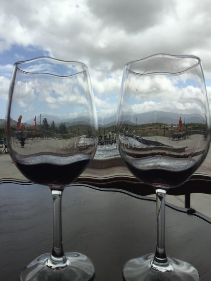 Se till och med vinexponeringsglas royaltyfria bilder