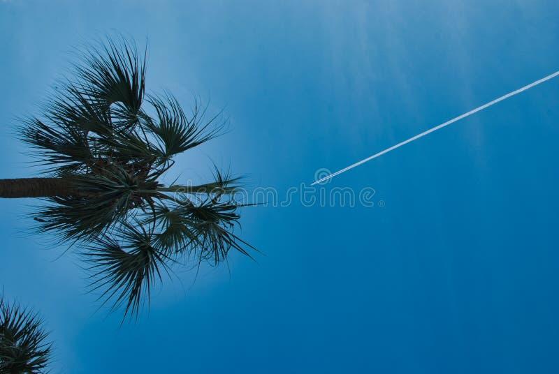 Se upp att dagdrömma av flyget bort royaltyfri fotografi