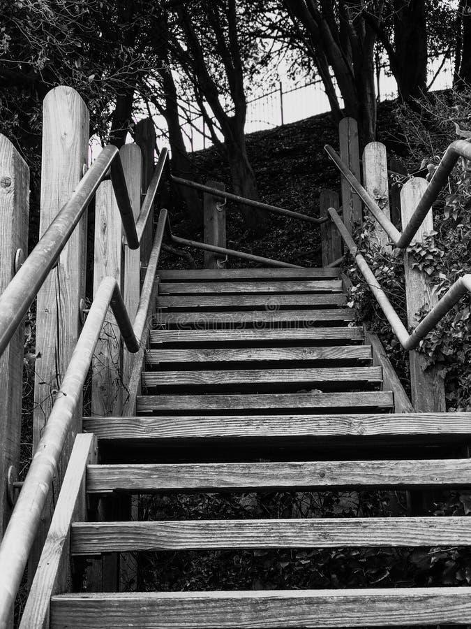 Se upp den utomhus- trappan i svartvitt arkivfoton