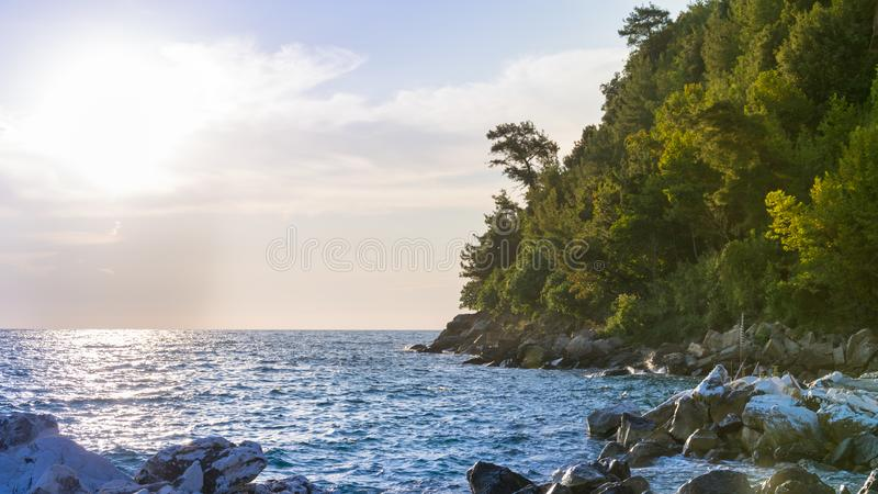 Sea view with the coast full of trees and stones, and blue sky as water royalty free stock photo