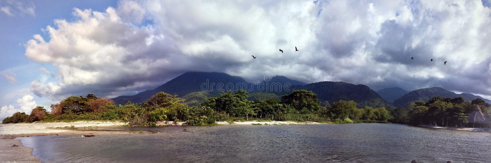 Sea fotos de stock royalty free