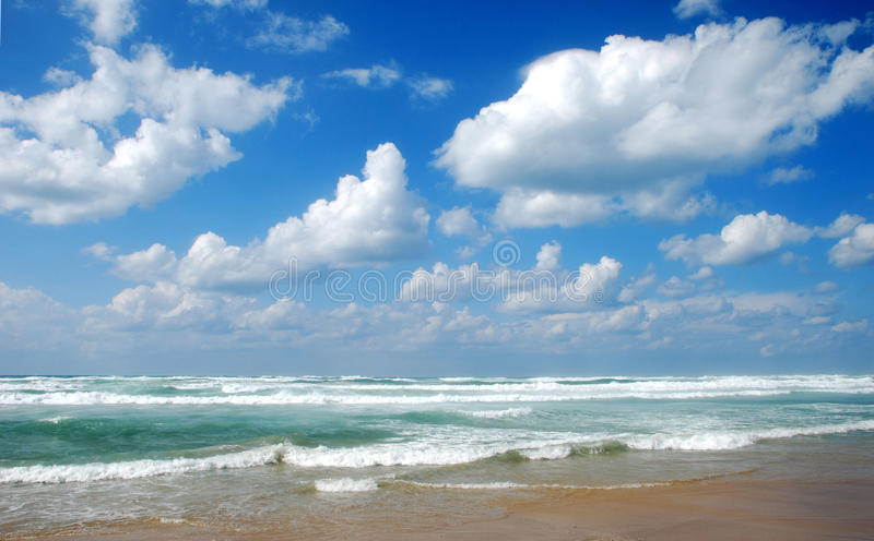 The sea stock images