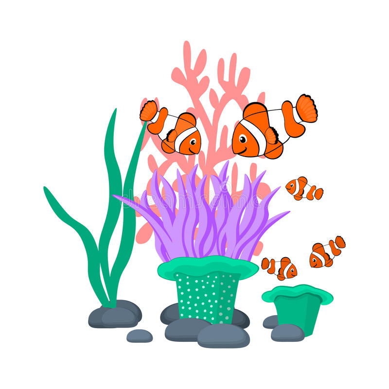 Sea anemone and clownfishes vector illustration Tropical sea life theme illustration Cartoon sea creatures vector graphic stock illustration
