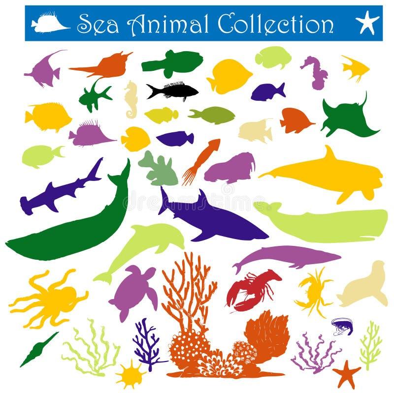 Download Sea animal stock vector. Image of shrimp, stingray, mammal - 12700277