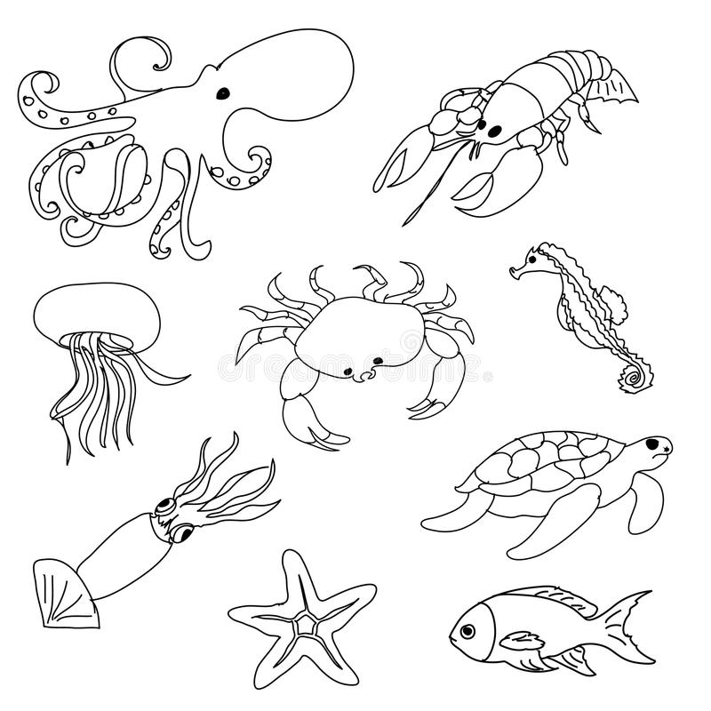 Sea Animals Coloring Page Stock Illustrations – 626 Sea Animals Coloring  Page Stock Illustrations, Vectors & Clipart - Dreamstime