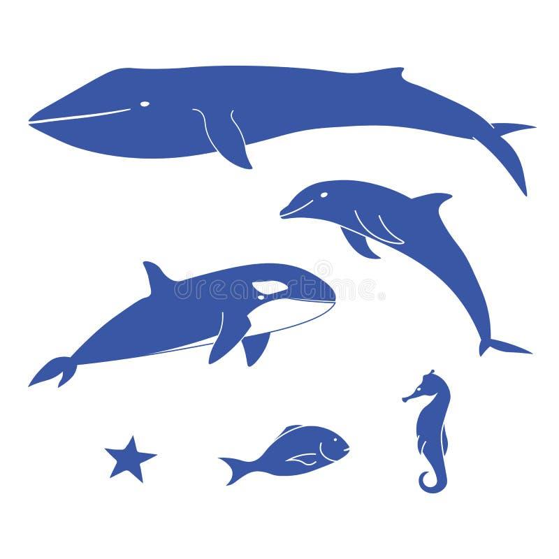 Sea animals. royalty free stock photo