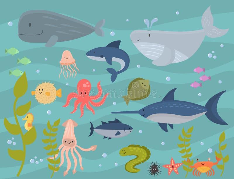 Sea animals vector creatures characters cartoon ocean wildlife marine underwater aquarium life water graphic aquatic. Tropical exotic beasts illustration stock illustration