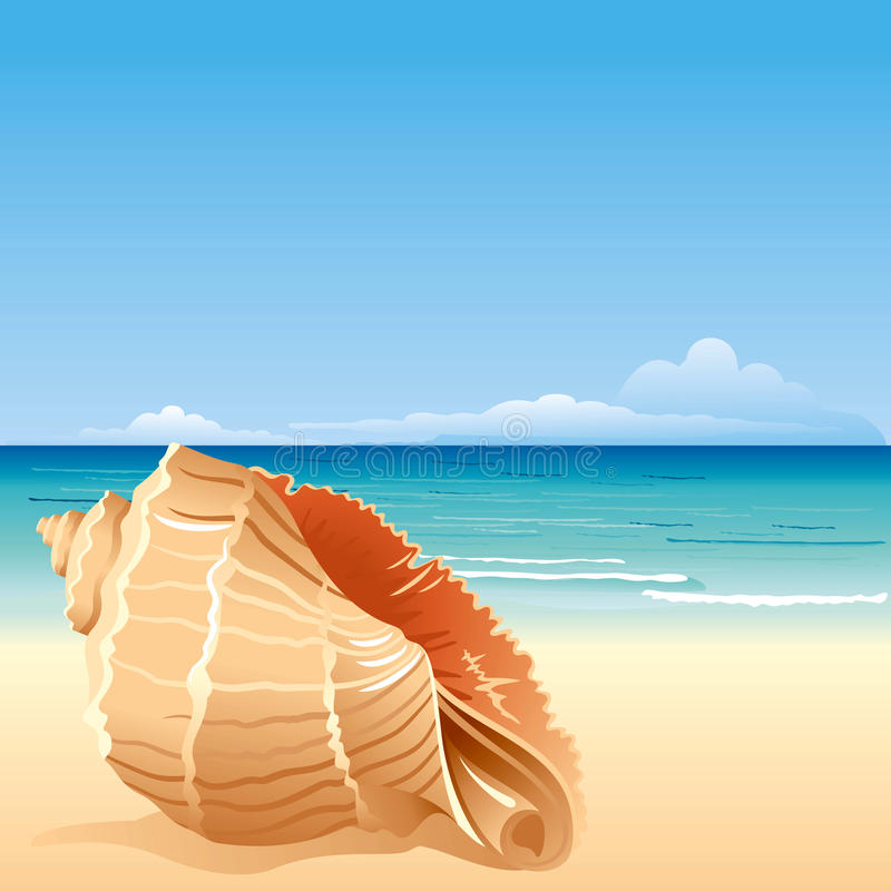 Sea background with shell. Sea background with large shell vector illustration