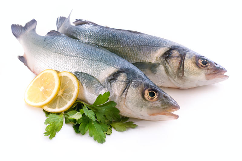 Download Sea-bass stock image. Image of fresh, store, market, supermarket - 18611259
