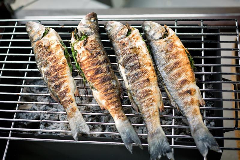 Sea bass barbeque. Grilled sea bass on the wire rack stock photos