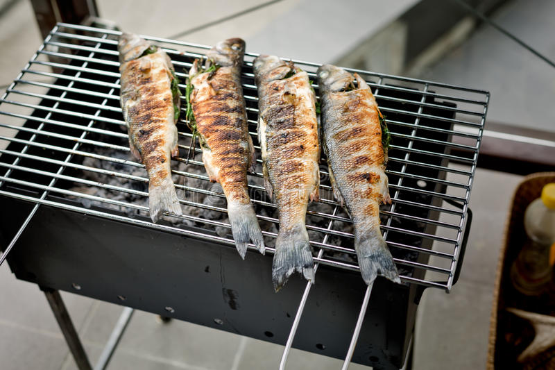 Sea bass barbeque. Grilled sea bass on the wire rack royalty free stock photo
