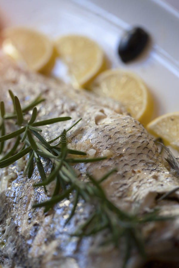 Sea bass fish filet with rosemary. Lemons and olives stock photos
