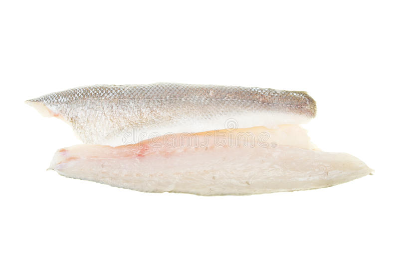 Sea bass fish fillets. Fresh raw sea bass fish fillets isolated on white stock photos