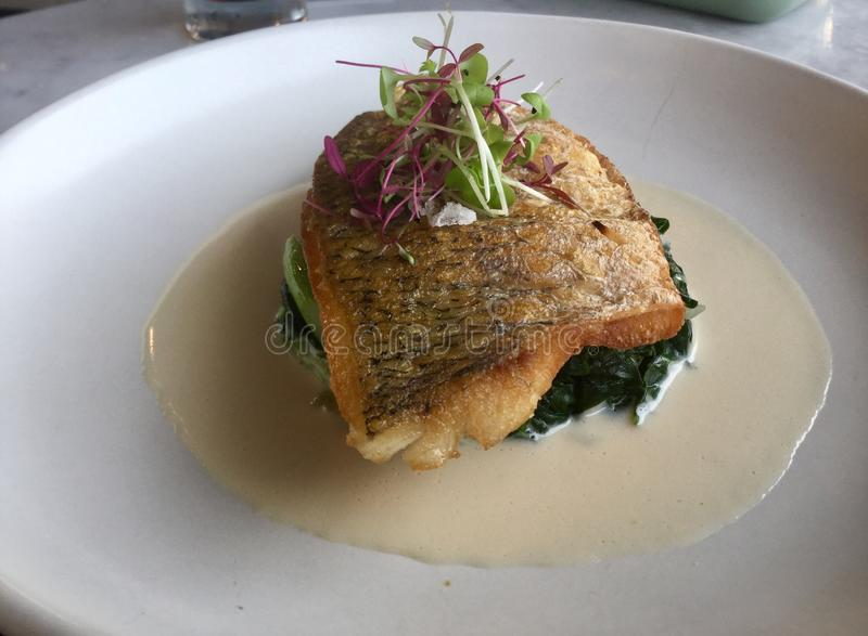 Sea bass fish on spinach . White Wine sauce . Delicious. Sea bass on Spinach with wine sauce royalty free stock photo