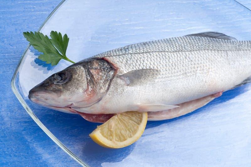 Sea-bass with lemon stock image