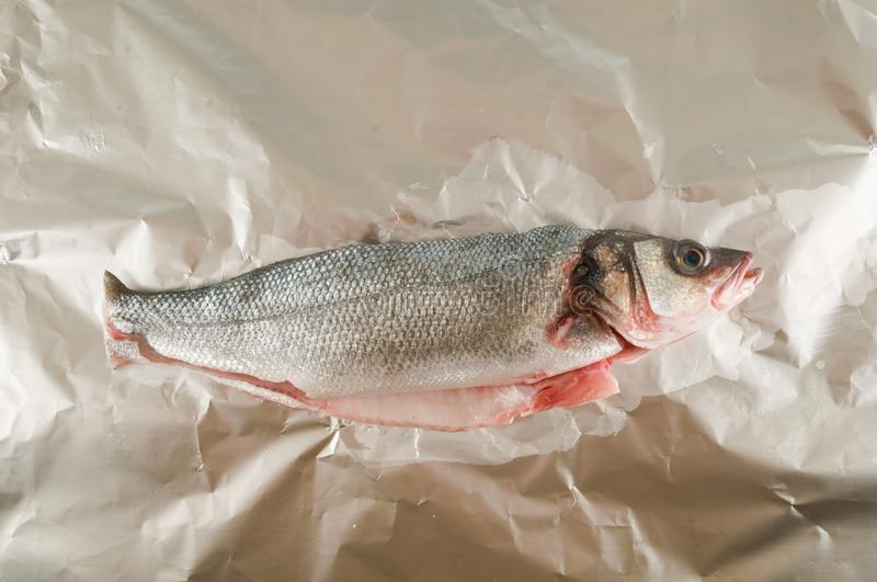 Sea bass on white background. Photo picture of Sea bass on white background royalty free stock images